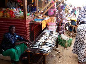 bakau-lokale-markt-6